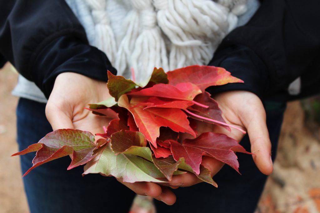 Jesenná atmosféra