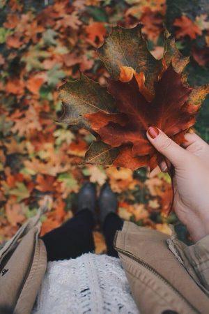 Toulky podzimní přírodou