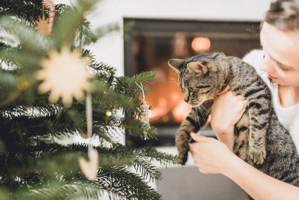 Vánoční fotka u stromečku.