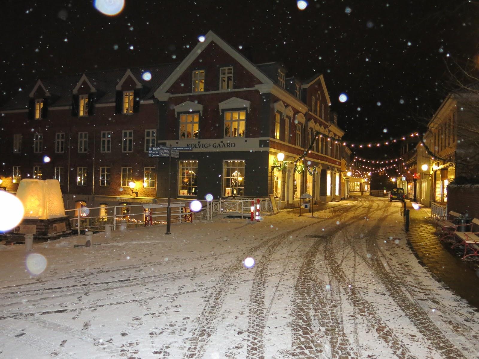 První sněhová nadílka v Ribe.