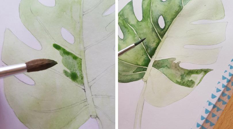 Akvarelový tutoriál - jak namalovat list monstery
