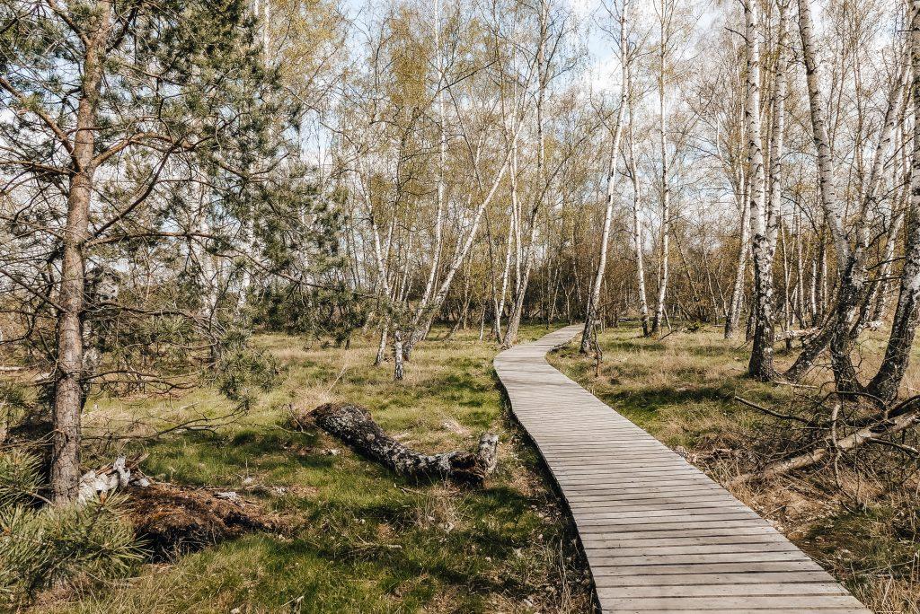 Rezervace Soos je podle travel blogerky Radky jedním z nejpozoruhodnějších míst v Česku