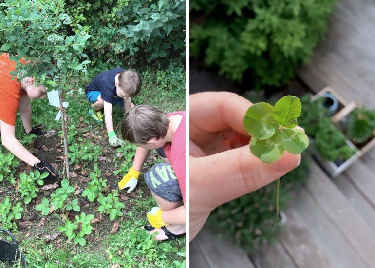 Co takhle zkusit s dětmi zahradničit nebo hledat čtyřlístky?